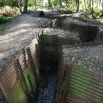 Trenches at Hill 62