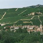 Diano d'Alba - frazione Valle Talloria con vigneti sullo sfondo