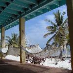 Hammocks lining the beach-front patio