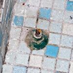 a thing on the bathroom floor,, any idea?