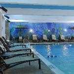 Baltimore's Largest Indoor pool