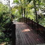 Bridge to Adult Pools