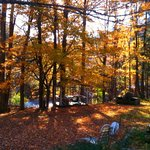 Chichester in Autumn