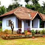 Jungle side's Independent House