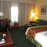 Adequate Sized Standard Room