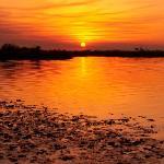 Bootsafari zum Sonnenuntergang