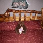 The bed and bear