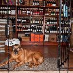 View of Wines & WineKeeper