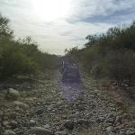 Photo de Green Zebra Adventures