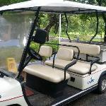 Buggy van for a joy ride!