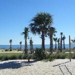 Mytrle Beach!
