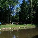 Notre bel étang, avec canards, cygnes, oies...