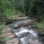 The stream by the centre