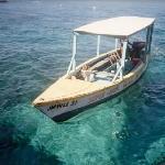 Errol's boat