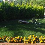 bakımlı bahçe