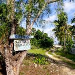 The bahamavilla driveway