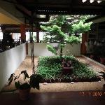 Near Reception