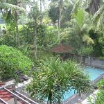 View from our room - pool and paddy fields beyond.