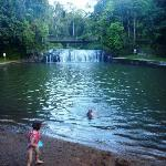 Swimming at Malanda Falls.  The caravan park is just up a path on the left, and on the right is