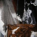 Beautiful cowhide rugs