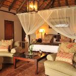 The Savanna Suite