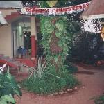 Garden area of Anjunapalms
