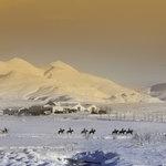 Laxnes in winter