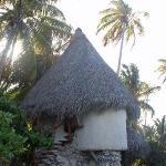 Robinson Crusoe bungalow