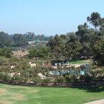 Парк Бальбоа