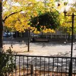Vue d'automne sur la Place Roy