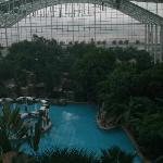 the indoor pool & hot tubs