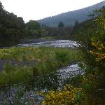 nearby  Tongariro River
