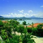 沖縄らしい光景