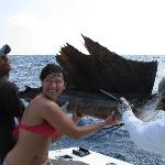 March White Marlin release