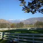 View towards Sequoia