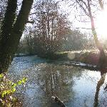 The River Lugg at the bottom of the garden