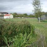 Foto di Millbatch Farm