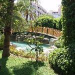 Aqua Gardens