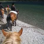 Getting ready to gallop on the beach and in the lake - so fun!