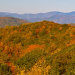 The Parkway in the Fall