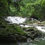 Waterfalls in the backyard