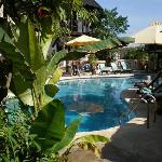 Tropicana Castle Swimming Pool2