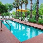 Great Clean Pool . Kids love it