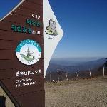 Top of Gondola Ride-Muju Resort