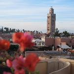 Koutoubia by day (from MK's roof terrace)