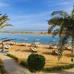 Sheraton Miramar Resort - El Gouna - Beach