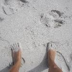 la arena de Tortuga Bay en la parte brava