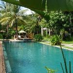 splendides piscine et jardin de la maison d'Angkor