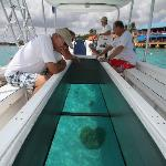 glass bottom boat bonaire inside