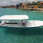Glass Bottom Boat and Kayak Snorkel Tours Foto